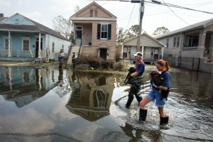 Katrina_Ducey_animal_rescue_01-1